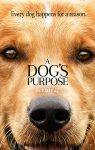 A Dog's Purpose (2017) free online full with english subtitles
