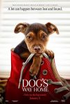 A Dog's Way Home (2019) english subtitles