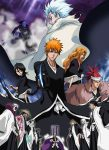 Bleach the Movie 2: The Diamond Dust Rebellion (2007) online full free with english subtitles