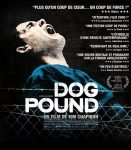 Dog Pound (2010) free full online with english subtitles