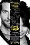 Silver Linings Playbook (2012) english subtitles